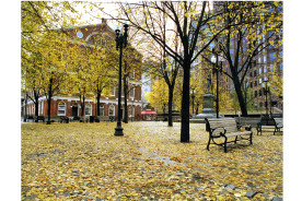 Faneuil-Hall-fall-24-x-30