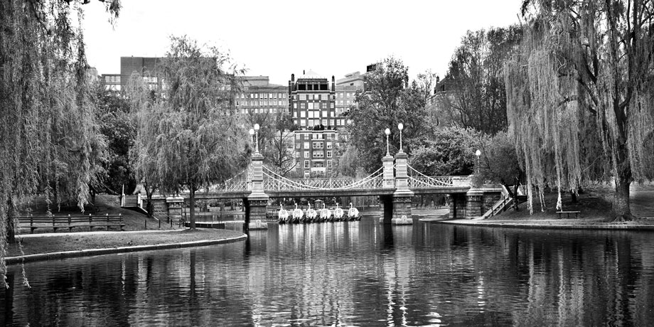Swan-Boats-Boston-MA